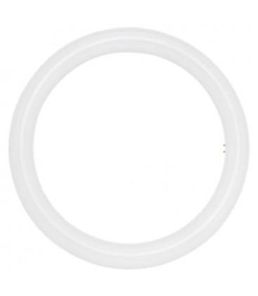 Tubo LED circular T9 11W de Roblan