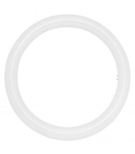Circular LED tube 20W by Roblan