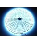 Tira LED color Blanco de 9.6 watios/m. IP67 a 12V de Roblan