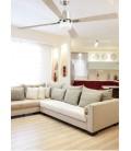 Fan with light Palk 213 4 diameter blades 2 E14 40W of Faro