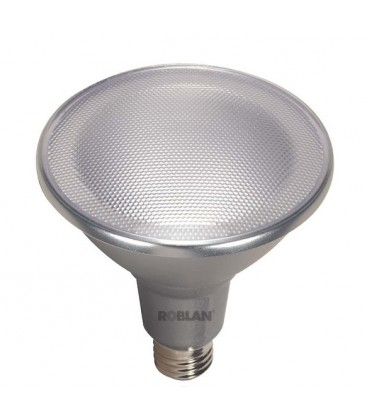 LED Lamp PAR38 power 18W socket E27 by Roblan