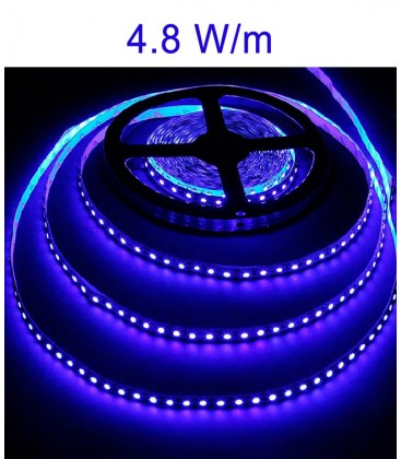 LED Strip blue 4.8 Watts/m. IP20 or IP67 Roblan 12V