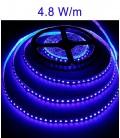 bandeaux LED bleu 4,8 Watts/m. IP20 ou IP67 Roblan 12V