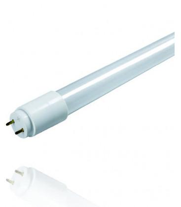 Tubo LED HL T8 cristal de Lacor