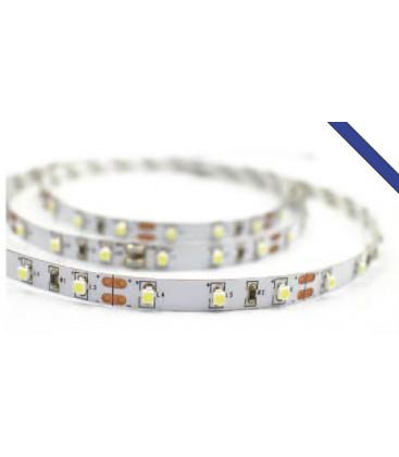 LED strip Z ROUGE 4.8W/m de Roblan